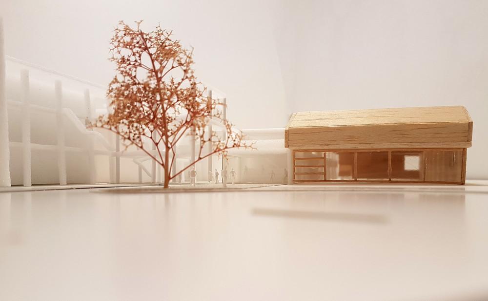 m architecture & V.O. | Materia Nova